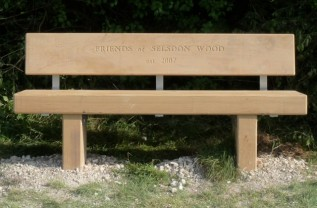 Ranmore Bench
