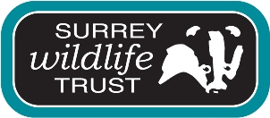 Surrey Wildlife Trust Logo colour